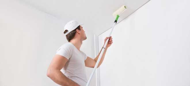 Водоэмульсионная краска для потолка: характеристика, виды и советы при выборе