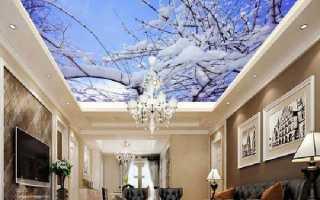 Какие возможности открывают бесшовные натяжные потолки с 3D фотопечатью и как изготовляются такие полотна?